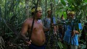 Coronavirus Brésil: chez des indigènes d'Amazonie, des plantes contre le virus