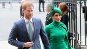"""Meghan Markle et le prince Harry sont rejetés de la cérémonie """"The Remembrance Day"""": Ils organisent leur propre hommage"""