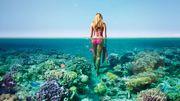 Des crèmes solaires bio pour protéger notre peau... et les coraux