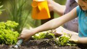 Créer un carré potager, c'est cultiver le plaisir et une alimentation saine à portée de main!