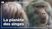 Le meilleur des mondes: La planète des singes de Pierre Boulle