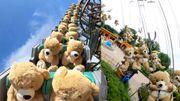 22 ours en peluche testeurs d'attractions, nouvelles stars du web