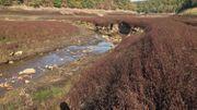La rivière coule dans son ancien cours, comme si le lac n'avait jamais existé