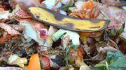 """Gaspillage alimentaire : """"En respectant le produit, on respecte son producteur aussi"""""""