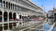 Les Procuratie Vecchie de Venise bientôt ouvertes au public