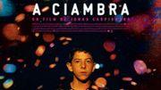"""""""A Ciambra"""" : portrait saisissant d'un adolescent rom en Italie"""