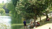 Pourra-t-on bientôt nager dans des étangs ou le canal à Bruxelles?