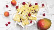 Recette de Candice : idées de glaces et sorbets pour petits et grands à mettre en moules plastique