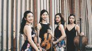 New Generation Quartets