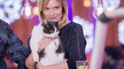 Le chat Cuby, la mascotte à quatre pattes de Viva for Life, revient de temps en temps voir ses anciens camarades.