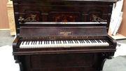 La douane néo-zélandaise fait détruire le clavier en ivoire d'un piano de 123 ans