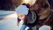 Vivre avec des animaux réduit le risque d'allergies