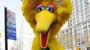 """Après 50 ans à jouer l'oiseau """"Big Bird"""" à la télé, il raccroche"""