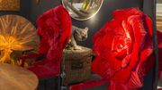 Fine Arts Fair Eurantica de retour au Nekkerhal à Malines