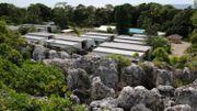 Australie: le docteur australien traitant les réfugiés sur l'île de Nauru va être expulsé