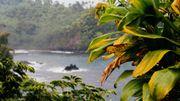 Désormais Ho'oponopono n'est plus cantonné aux paysages de rêve hawaiiens, il fait partie de la panoplie d'outils de développement personnel utilisés chez nous.