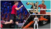 2017, une année sportive belge : Goffin au top, la 1ère de Vandoorne, les Dragons flambent