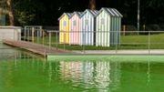 Une piscine biologique ... Du plaisir à l'état pur !