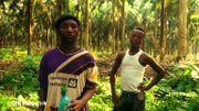 Deux ouvriers sous-traitants de la Socapalm. L'un d'eux à 16 ans.