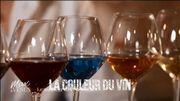 La leçon d'Ophélie : la couleur des vins