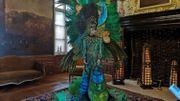 Les costumes chatoyants du carnaval de Rio au château de Modave