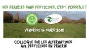 Des prairies sans pesticides, c'est possible !
