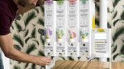Cozie : du zéro déchet et de la douceur pour des cosmétiques bio