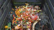 Faire son compost, même sans jardin
