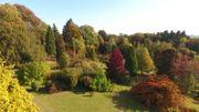 L'arboretum de la Closerie du Rond-Chêne à Esneux vu du ciel !