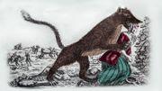 Qui a peur de la bête du Gévaudan?