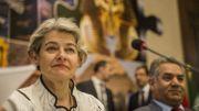 Ouverture de la session du comité du patrimoine mondial de l'Unesco