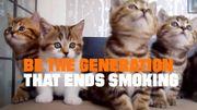 Chatpocalypse: le spot anti-tabac le plus original, le plus choc et le plus drôle