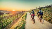 Bike-Packer: une agence de voyages à vélo