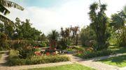 Le Jardin botanique Val Rahmeh à Menton