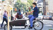 Bruxelles: des vétérinaires se lancent dans les visites à domicile à vélo