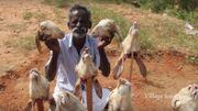 Un souriant père indien cuisine sur YouTube