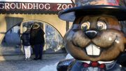 Only In America: Groundhog Day