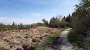 La Réserve Naturelle des Hautes Fagnes reste le site privilégié des promeneurs.