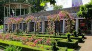 L'Orangerie à Bastogne célèbre la Saint-Valentin avec sa nouvelle exposition