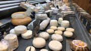 Des fromages, pleins de fromages, trop de choix !