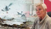 Il était un petit navire, l'essai filmo-biographique de Marion Hänsel
