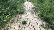 Changement climatique: la hausse des températures pourrait entraîner une augmentation de décès chez les 15-34 ans