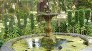 Les couleurs de l'arrière-saison au jardin botanique de Leuven