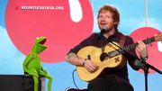 LE duo qu'on attendait: 'Kermit la grenouille' et 'Ed le Sheeran'