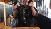 Après 20 ans passé dans un aquarium de resto, un homard retrouve la liberté