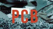 Les PCB sont des polluants organiques persistants.