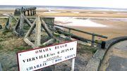 70e anniversaire du Débarquement : visiter la Normandie à l'heure du D-Day