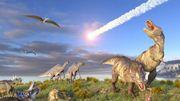 Enfin la pièce manquante à l'explication de la disparition des dinosaures!