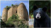 Forestia et le château de Franchimont, un but de promenade pour les familles