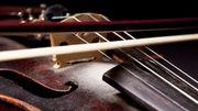 Comment voyager avec un instrument de musique ?